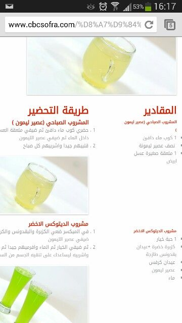 Sally Fouad Detox 2 Detox Arabic Food Fruit