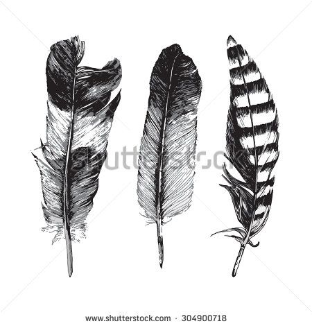 3 hand drawn feathers on white background - stock vector