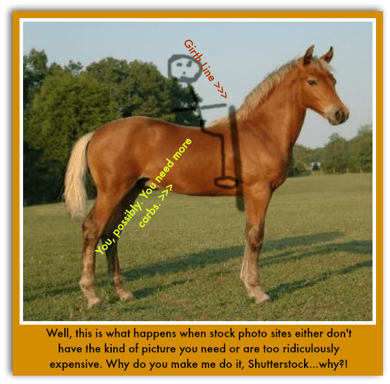 Staying on or Eating Dirt Basic Riding Position (With
