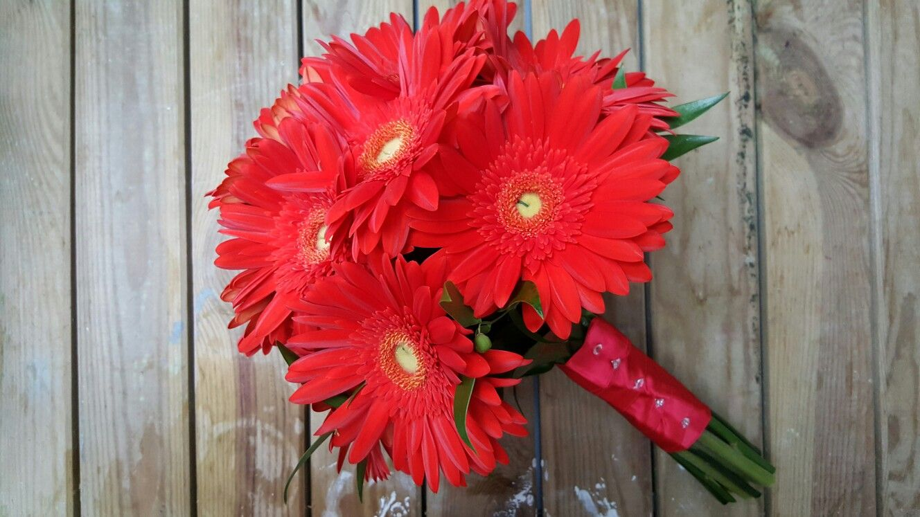 Simple red gerberas with soft ruscus