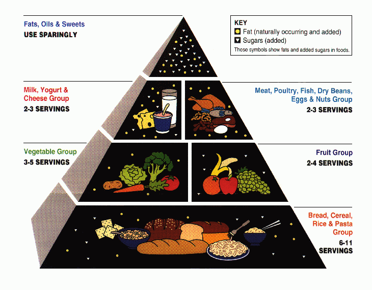 Why The Food Pyramid Is Wrong Food Pyramid Mayo Clinic Diet Mayo Clinic Diet Plan