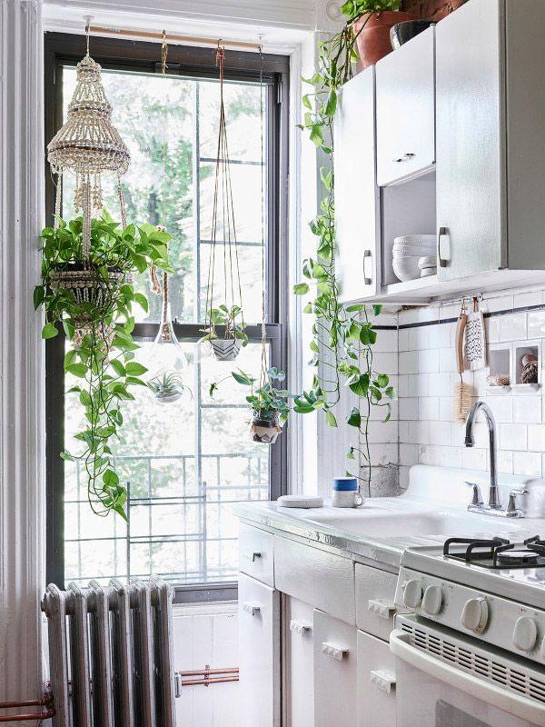 Un appartement cosy à Brooklyn Plantes, Cuisiner et Appartements - Idee Deco Cuisine Vintage