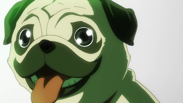 Apo the pug in Space Brothers.