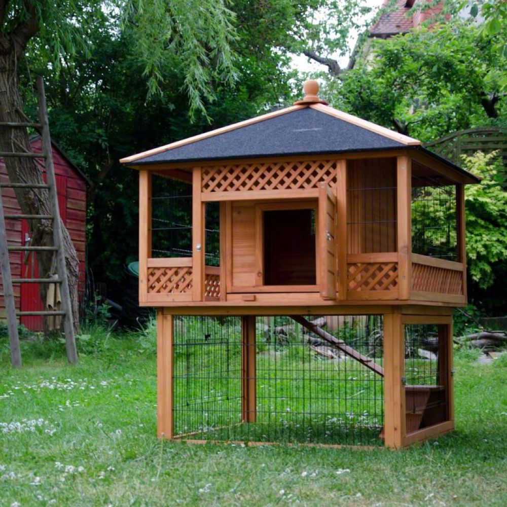 Pin On Guinea Pig Homes