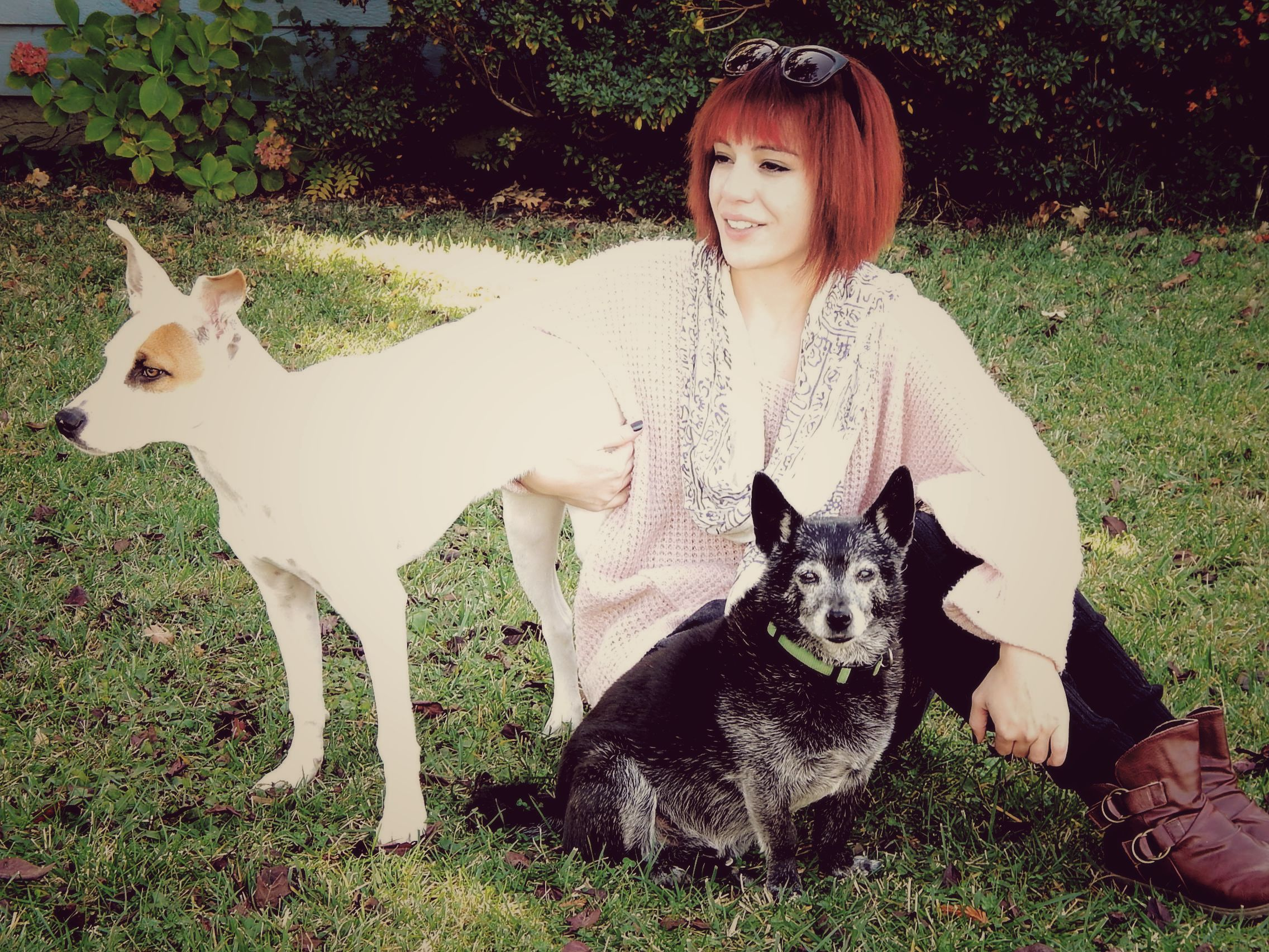 oversized sweater, leg warmers over lace tights, boots, and my boyfriend's dogs posing as fashion accessories, lol.