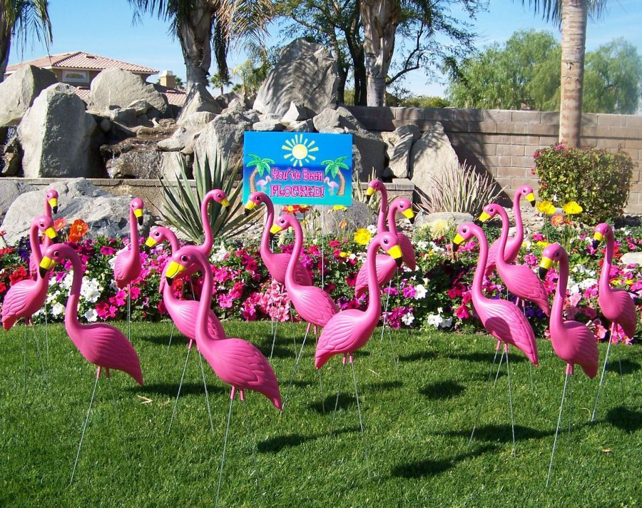 we LOVE classic lawn flamingo's. so random yet became so