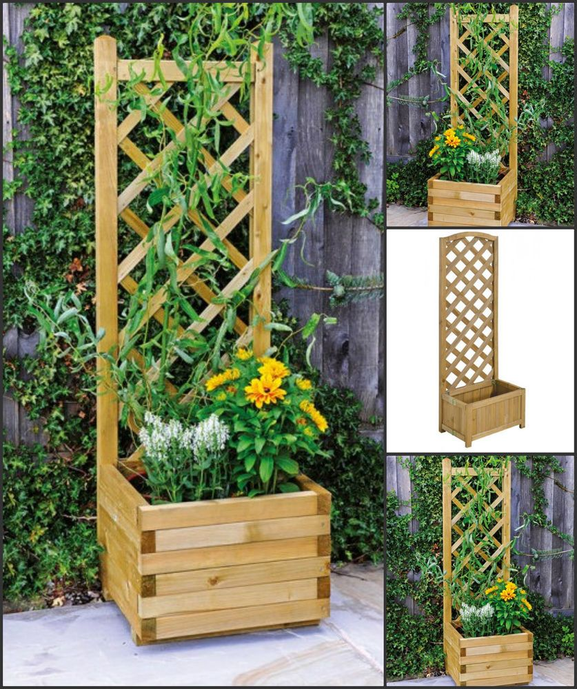 Fencing Planters Climbing Plants Balcony Decking Patio Trellis Wood Garden Back Backyard Ideas