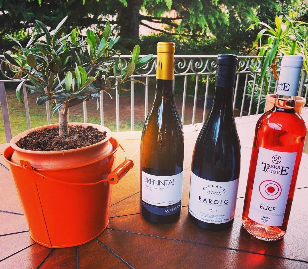 Gode nyheder til vores kunder! Den anmelderroste Gewürztraminer Brenntal Riserva 2014 er igen på lager efter at have været udsolgt i et par uge. Barolo Gillardi 2012 er også tilbage og vi har en frisk new entry: Rosé Elice Terre di Giove 2016 lækker Sangiovese-baseret rosé perfekt til sommeren #gewurztraminer #barolo #rosé #rødvin #hvidvin #rosevin #vininorden #vinbutik #vinhandel #italienskvin #cortaccia #gillardi #terredigiove #oliventræ #lækkervin #hygge #italien #madogvin #godpåske…