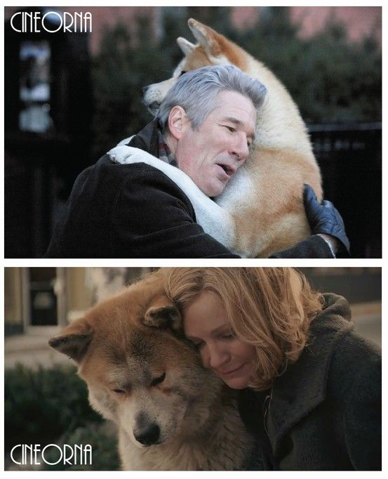 Pin on HACHI A DOG'S TALE