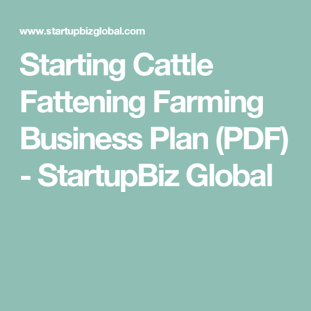 Starting Cattle Fattening Farming Business Plan (PDF