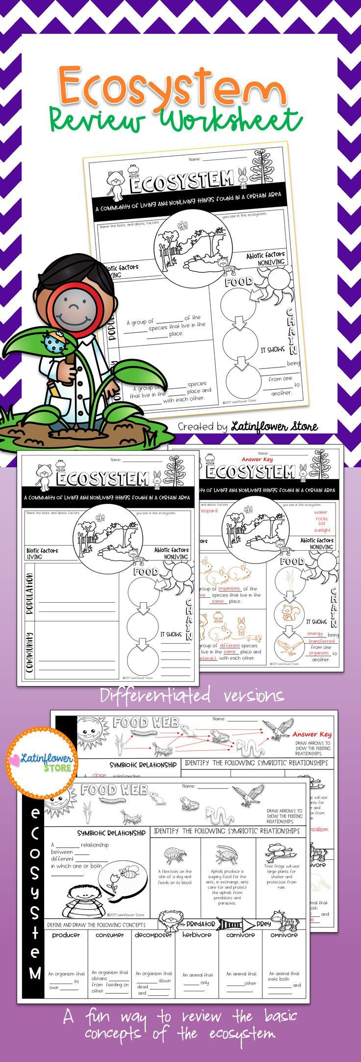 Ecosystem Review Worksheet Ecosystems Biology Experiments Teaching Resources