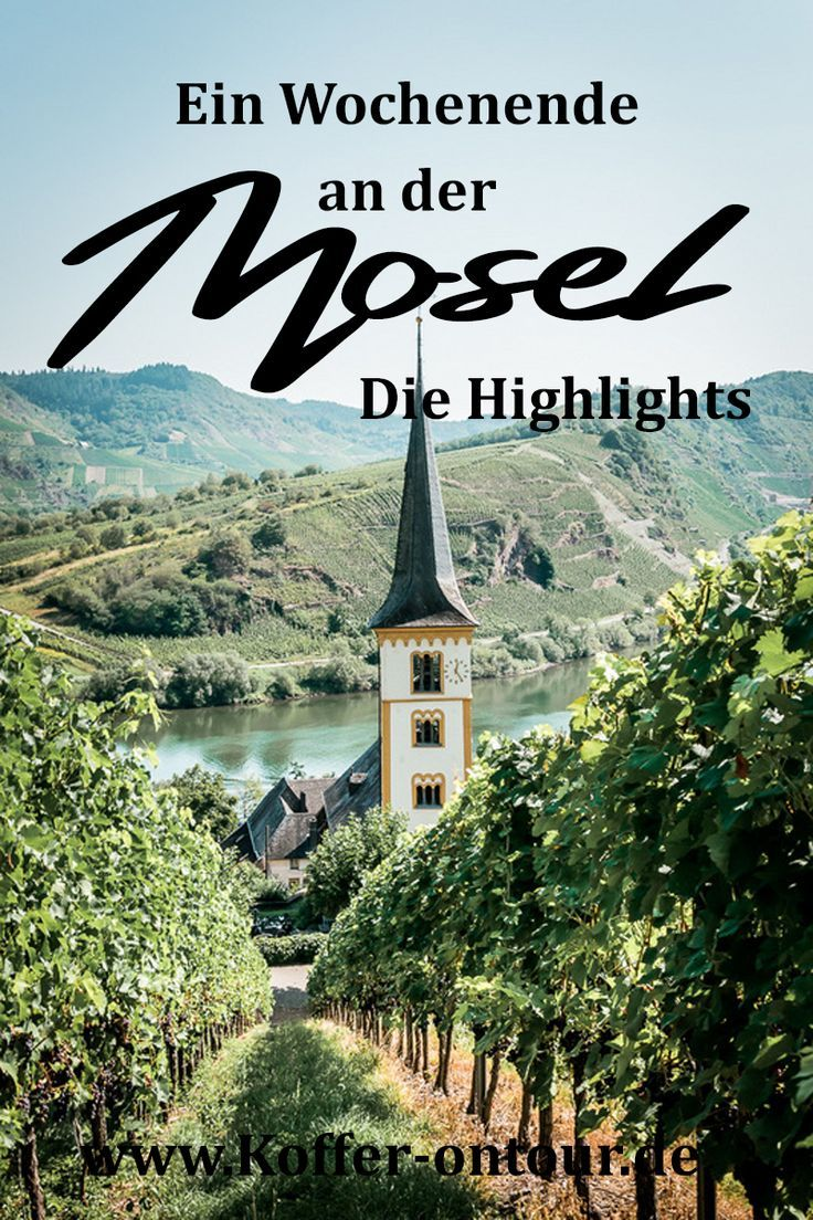 Photo of These are the most beautiful places on the Moselle