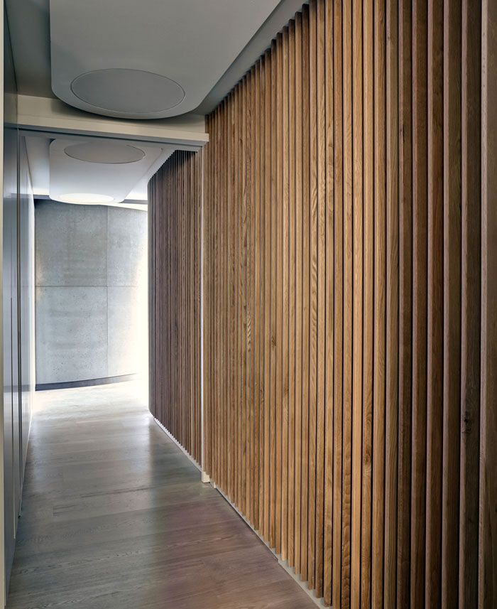 Wood Cladding Bathroom Walls: Dynamic Loft Warehouse Style Apartment