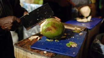 The Good Oil on Coconuts radio interview with Mike Foale former CSIRO Scientist and Honorary Research Fellow School of Agriculture & Food Science University of Queensland - ABC Radio National RN First Bite