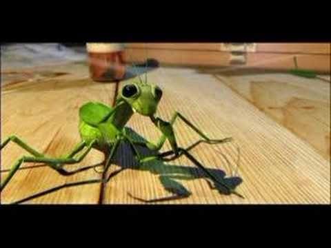 La parábola de la mantis. Mantis parable Sobre la solidaridad y el perdón. About solidarity and forgiveness.