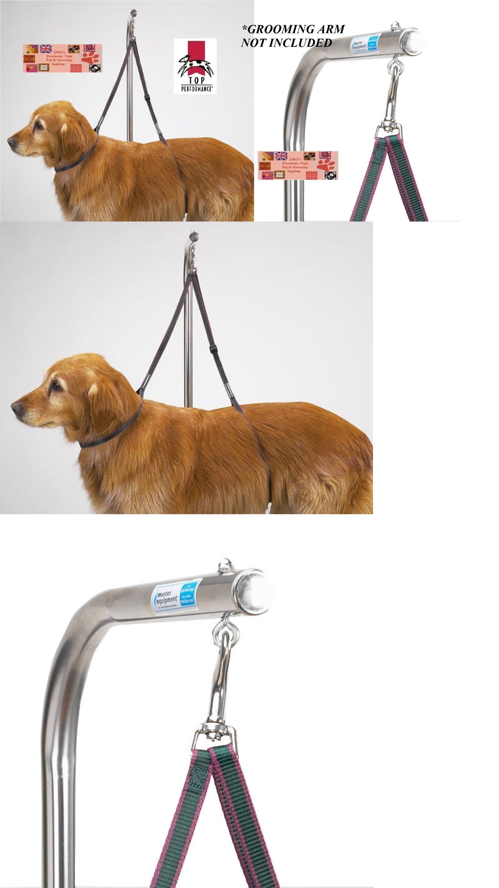Pin On Grooming Tables 146241