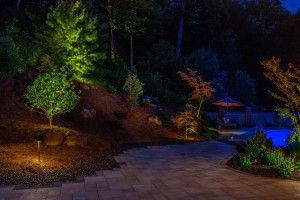 """""""PA Landscape Group recently updated my pool and outdoor living area…they literally turned the eye-sore into the focal point. I can't imagine a higher quality company….from the design, to the execution, to the final outcome. Completely professional, on time, on budget, and easy to work with. They have certainly earned any and all of my future business."""""""