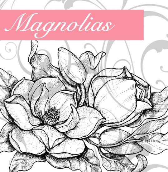 Magnolias Graphic Tatt It Up Tattoos Magnolia Tattoo Art