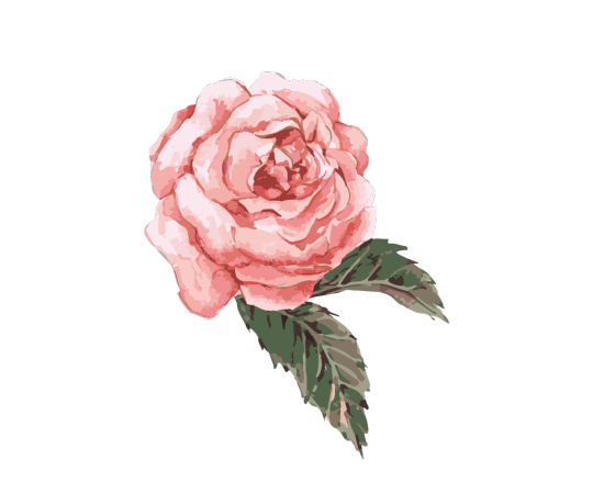 S4dpngs S4dpngs S4dpngs S4dpngs Watercolor Rose Watercolor Flower Background Flower Painting