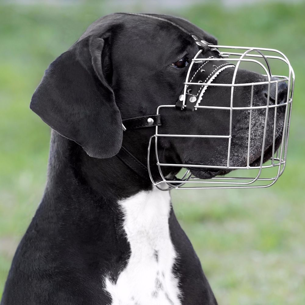 Details About Wire Dog Muzzle Great Dane Metal Basket Leather