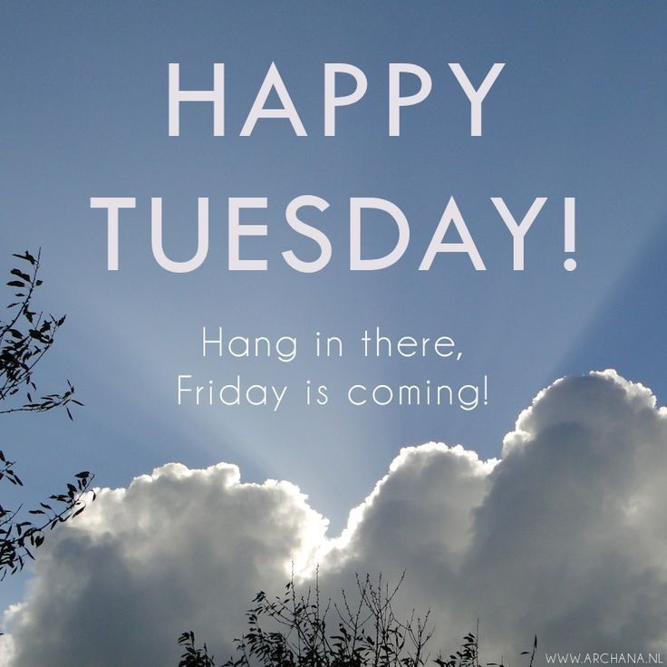 Happy Tuesday! Hang In There! Friday's Coming Let's
