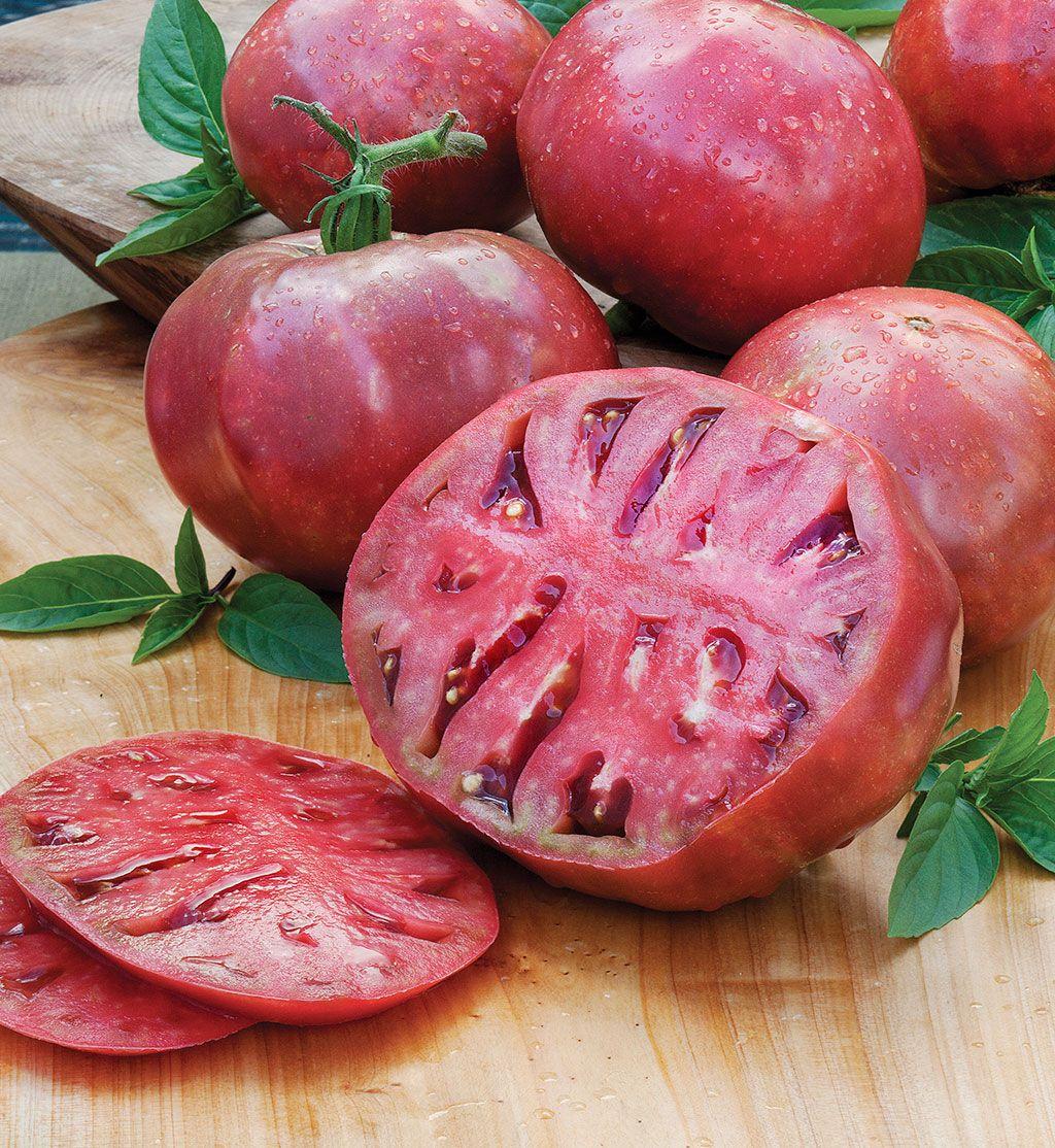 Cherokee Purple Heirloom Tomato Backyard Vegetable 400 x 300
