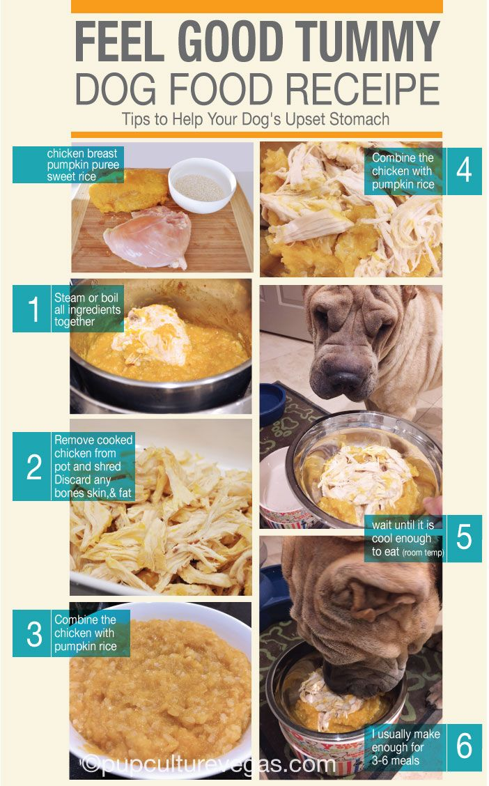 once a while my shar pei get tummy bugs. here is what i make to help