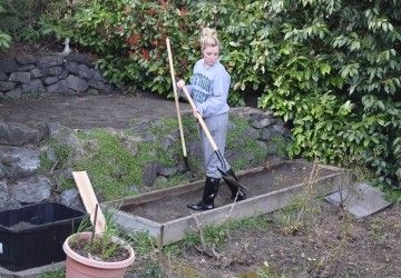 Superior A Beginneru0027s (no Really, We Mean BEGINNERu0027S) Guide To Gardening   Seattle  Refined