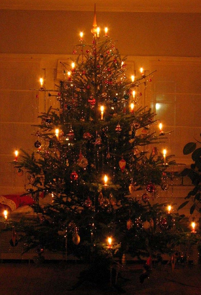 Superb German Christmas Tree With Lit Candles Germany Born Parents Always Had With  Little Candles Glowing Brightly And How Beautiful It Always Was On Christmas  Eve ...
