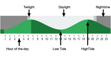 Ocean City Nj Tide And Daylight Times Surf Forecast Tide Sea Isle City