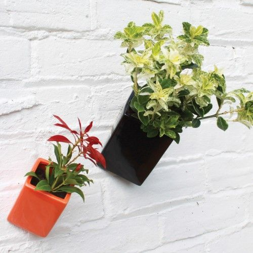 Wall Pots in Black