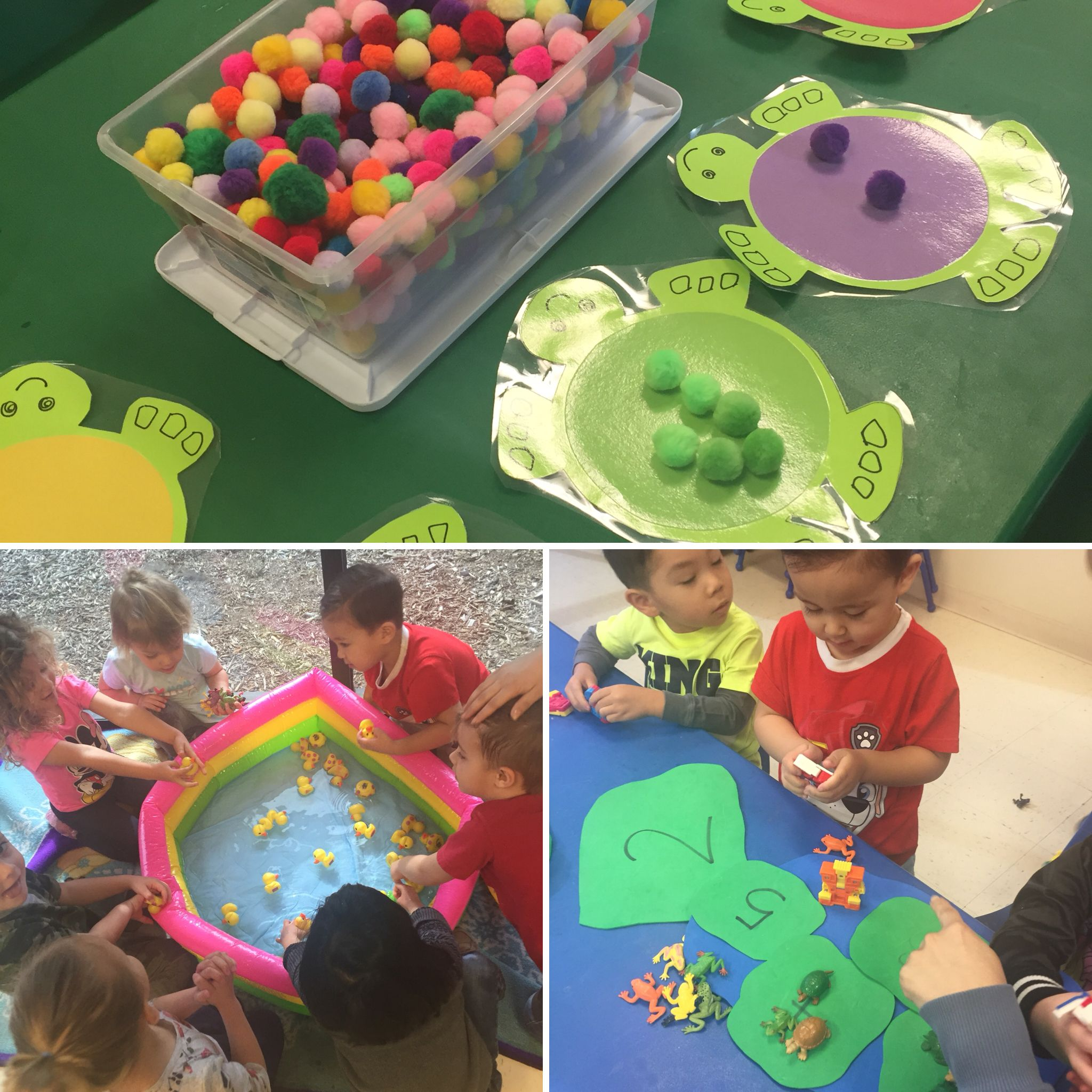 Preschool pond theme activities with color match, pond fun, and ...