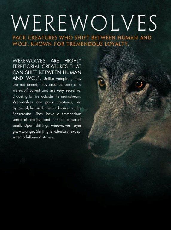 Werewolves … | Werewolf legend, Werewolf art, Werewolf ...