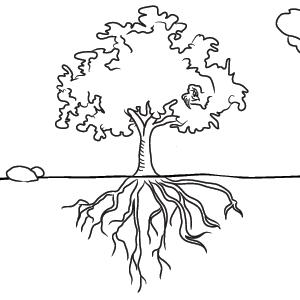 Tree With Roots Drawings Tree With Roots Drawing Tree Drawing Family Tree Clipart