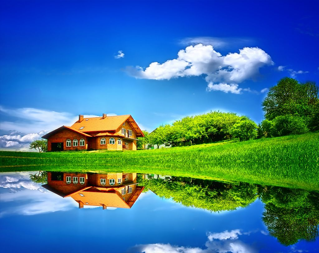 Lake And Grassland Wallpaper Bunga Wajah