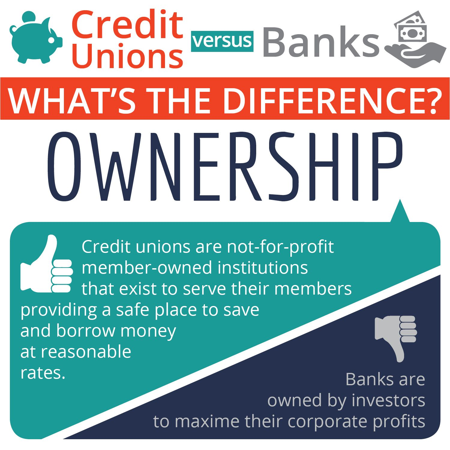 At A Credit Union You Own The Place Credit Union Credit
