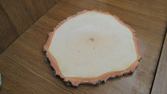Large Birch Wood Slices 11 12 Inch 11 12 By Floristsupplygoods Wood Slices Birch Wood Tree Slices