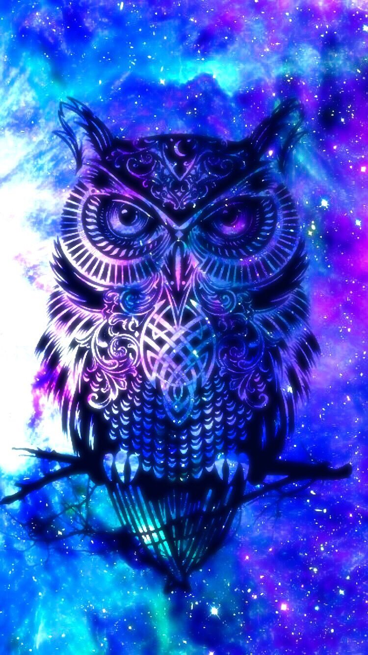 Owl galaxy cute Owl wallpaper, Cute galaxy wallpaper