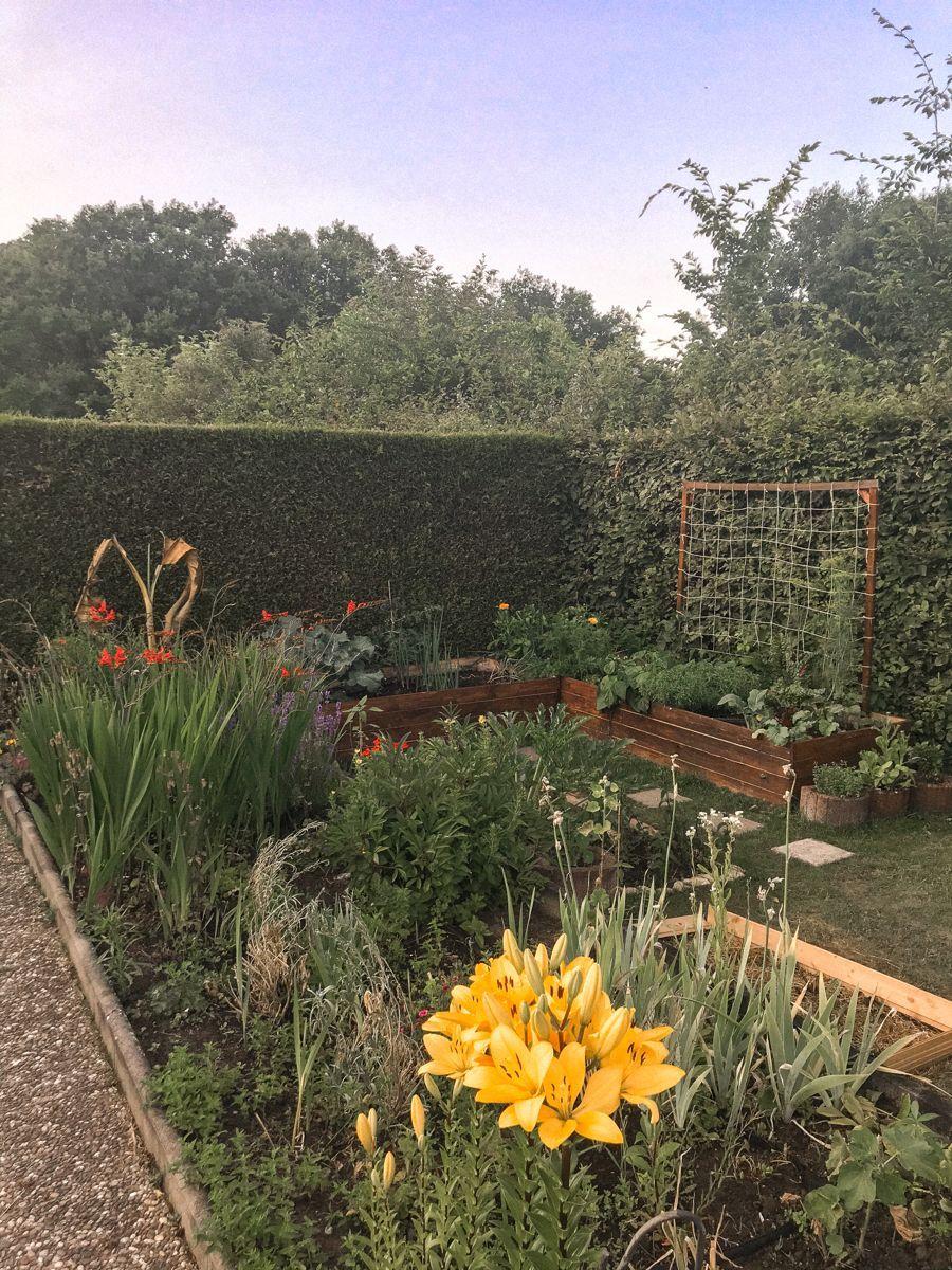 Beetumrandung Garten Einteilung Gartengestaltung Garten Beetumrandung