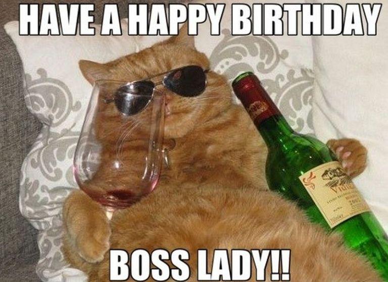 101 Funny Cat Birthday Memes For The Feline Lovers In Your Life Cat Birthday Cat Birthday Memes Happy Birthday Boss Lady