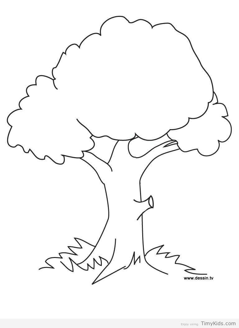 http timykids com trees coloring page html colorings pinterest
