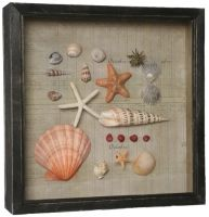How easy would this be to do yourself with things you find at the shell art how easy would this be to do yourself with things you find at the beach solutioingenieria Image collections