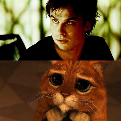 hahaha i love damon. and his eyes.