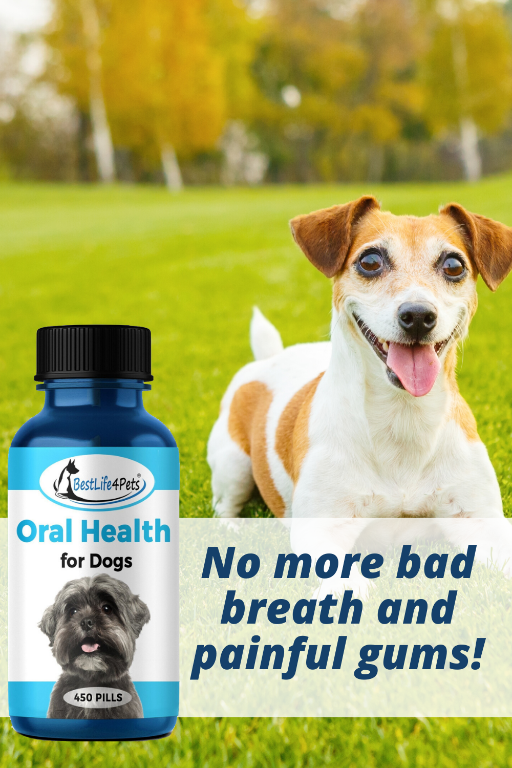Oral Health For Dogs Helps Gingivitis Bad Breath And Periodontal Disease 450 Pills In 2020 Oral Health Periodontitis Periodontal Disease