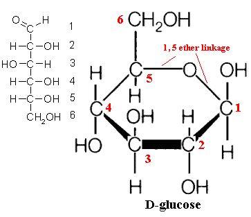 Pin En Enzymes Catalysis Regulation