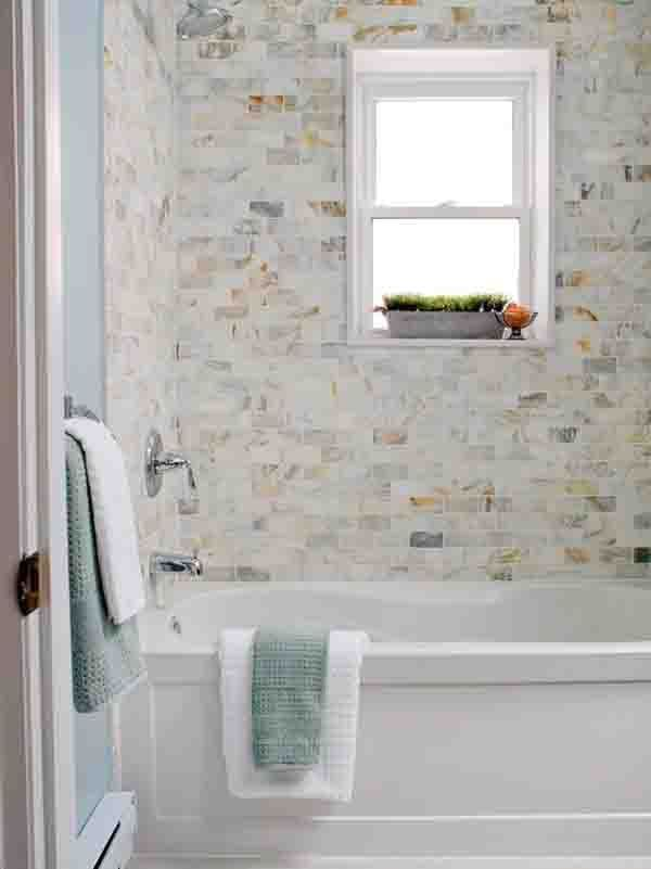 Potted Grass | Shower Tub | Blue Wall Color | Paint Color | Tile Backsplash  |
