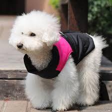 Cómo hacer una capa para perro, de manera fácil y muy económica, tutoriales paso a paso para hacer una capa impermeable para perro.