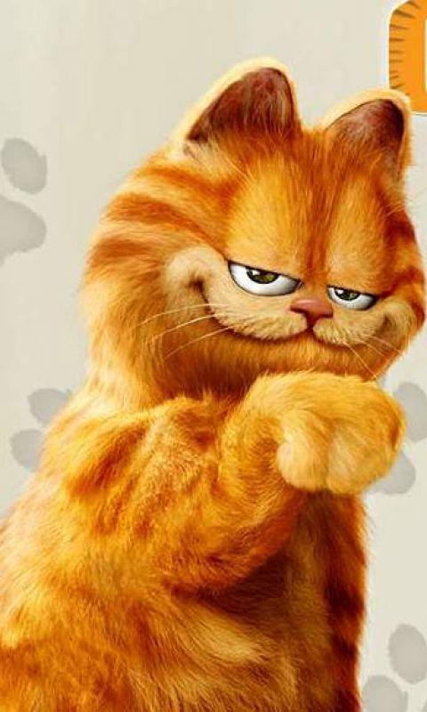 Funformobile Garfield Garfield Cat Cute Cartoon Wallpapers Cat Wallpaper
