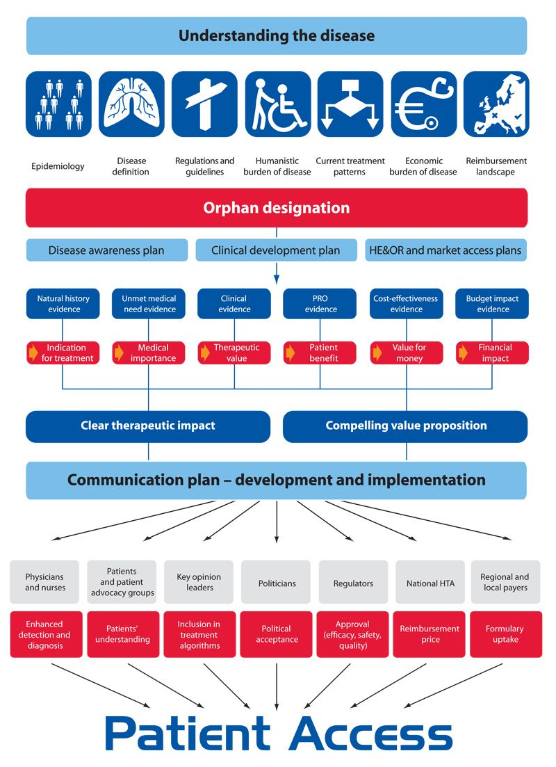 Orphan drug pathway to market [Infographic] Infographic