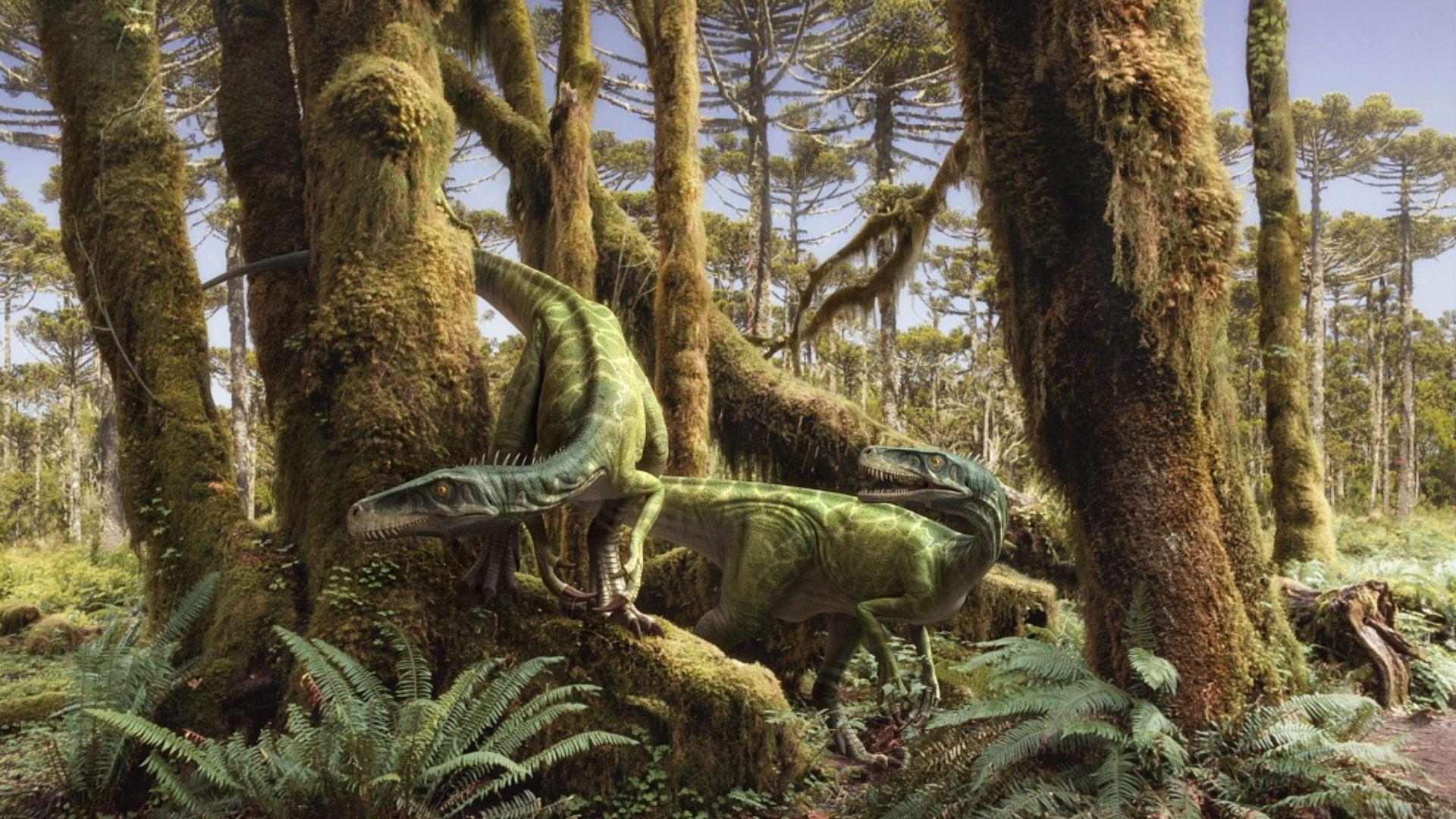 fonds d'écran dinosaure : tous les wallpapers dinosaure | dinosaurs